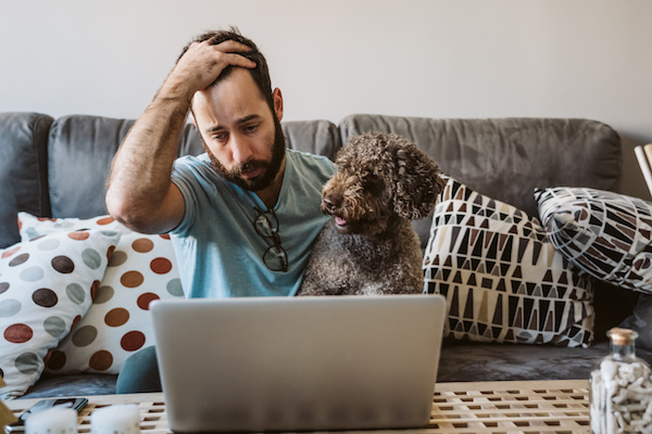 Labradoodle Parents: How to Work From Home With a Dog