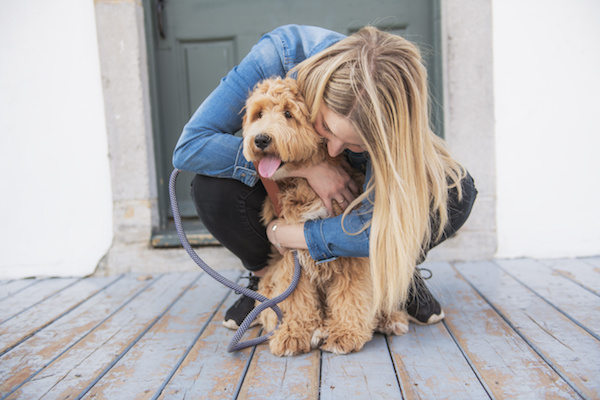 How to Choose the Right Vet for You and Your Labradoodle